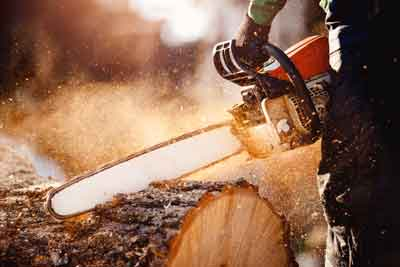 Chainsaw cutting a large log